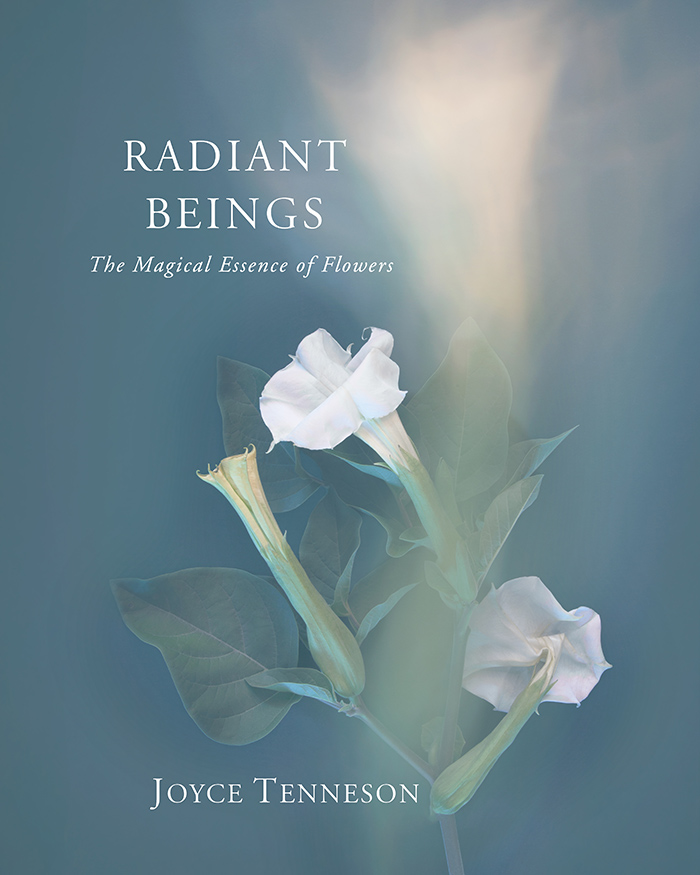 Radiant Beings cover
